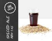 Spiced Ale 1 Gallon Beer Recipe Kit - option to ADD Brew Bag