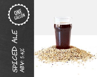 Spiced Ale 1 Gallon Beer Recipe Kit