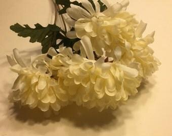 5 bloom off white mum bouquet  (R10)