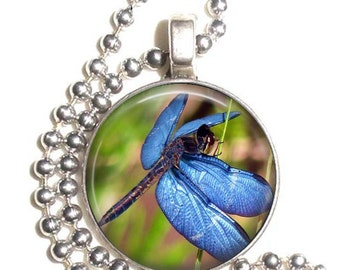 Blue Dragonfly Art Pendant, Earrings and/or Keychain, Round Photo Silver and Resin Charm Jewelry