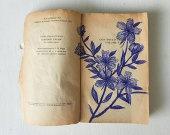 Dog Rose Biro Drawing On A Vintage Robinson Crusoe Book