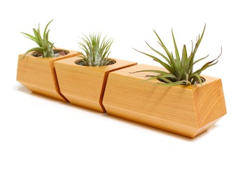 Boxcar Planter - Solid Douglas Fir