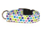 Polka Dot Dog Collar, Dog Collar, Polka Dots, FREE SHIPPING, adjustable dog collar