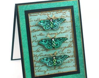 Teal butterfly specimen blank card, french script, vintage butterflies greeting card