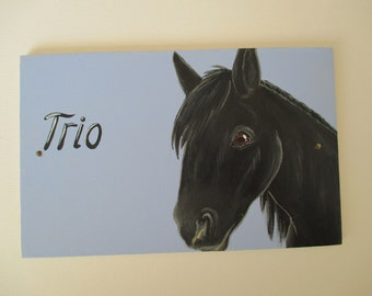 Stable Name Sign Horse Pony Donkey Goat Sheep Pig Chicken Personalized Pet Portrait Wooden Picture Painting by Dandelion's Gallery