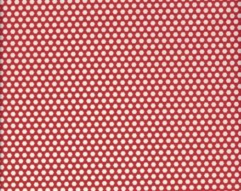 Small Dots  (Colorl C) by Suzuko Koseki for Yuwa of Japan
