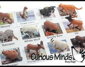 Montessori North American Wildlife Animal Match - Miniature Animals with Matching Cards - language materials -