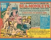 Fridge Magnet Sea Monkeys circa 1970's, vintage comic book advertisement image, a bowl full of happiness, instant pets