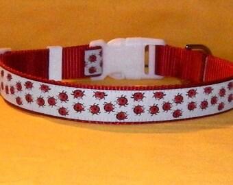 Ladybugs collar