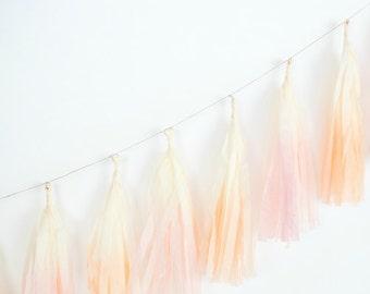Dip Dye Tassel Garland - Peachy Keen