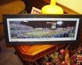 Kansas City Royals 2015 World Series Champions custom framed Kauffman Stadium opening flag ceremonies