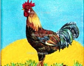 ROOSTER Portrait - Hand painted - Original- Signed
