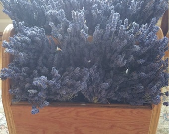 6 Bunches of Intensely Deep Blue Dried Lavender Buds Bouquets