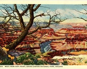 Grand Canyon National Park West from Hopi Point Vintage Arizona Postcard (unused)