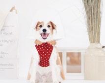 Oh! H-Harness / Orange Polka Dot Cotton with Corkboard