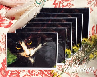 Note Card Set: Tuxedo Cat