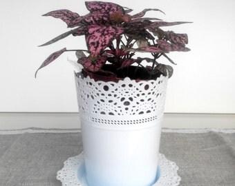 Pot, plastic pot, flower pot, flower plastic pot, white pot,flower in pot,garden pot,garden decoration,