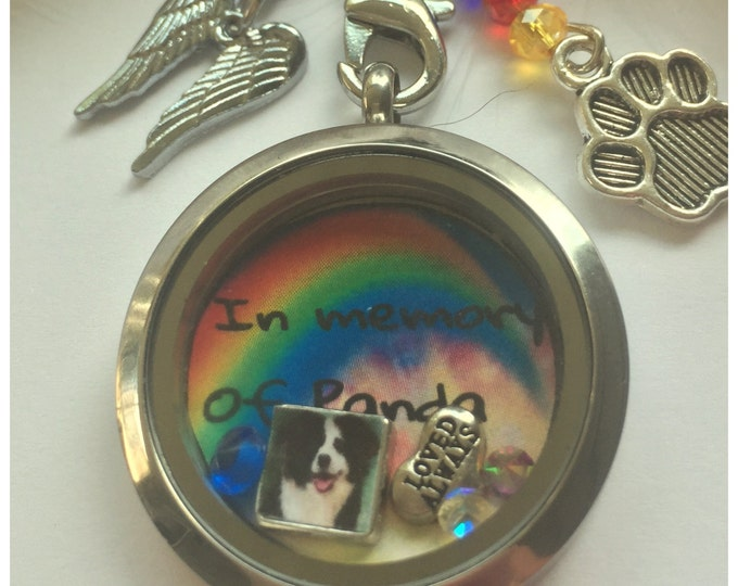 Rainbow bridge memorial pet loss locket picture charm stainless steel toggle clasp necklace