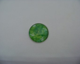 Transparent Green leaves and veining Art Print Cab  4551