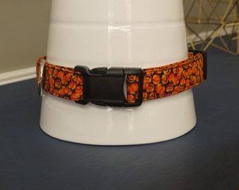 Halloween Pumpkin Collar
