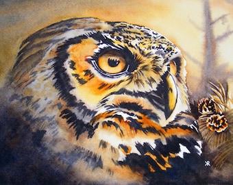 Owl - Original watercolor painting