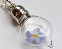 Forget-me-not Necklace - Forget-me-not Flower Glass Vial Pendant - Flower Jewellery - Nature jewelry - Flower Necklaces - Dried Flowers