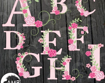 Floral Alphabet clipart, Alphabet clipart, Pink Roses, Floral clipart, Letters A to I, commercial use, digital clip art, AMB-526