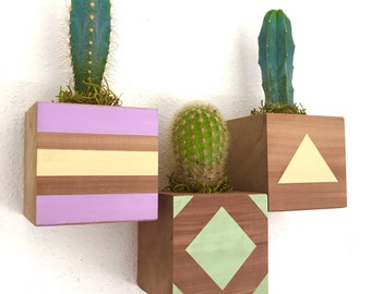 Valentine's Day Gift || CUSTOM COLOR + DESIGN Floating Cactus Cube Wood Planter