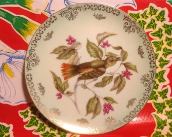 Vintage fine china  hand painted bird plate