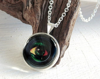Eye Glass Dome Necklace, Glass Pendant, Photo Jewelry, Art Print