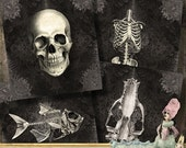 """Last Call Skulls and Skeletons - 2x2""""  dark gothic  - Digital Collage Sheet (087) - Printable instant download for greeting cards magnets gi"""