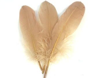 10 pc's x 15cm Latte Duck Feathers