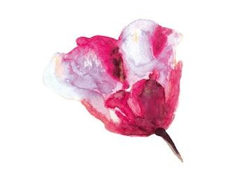 Flower Watercolor painting, Watercolor flower print, Abstract flower, Flower art, Red flower, Floral print, Watercolor art