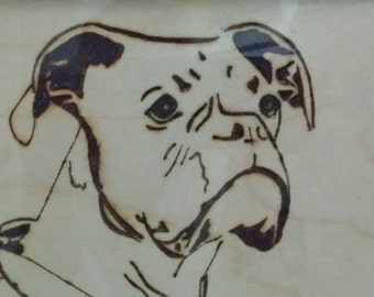BOXER DOG pyrography picture in plain A4 frame