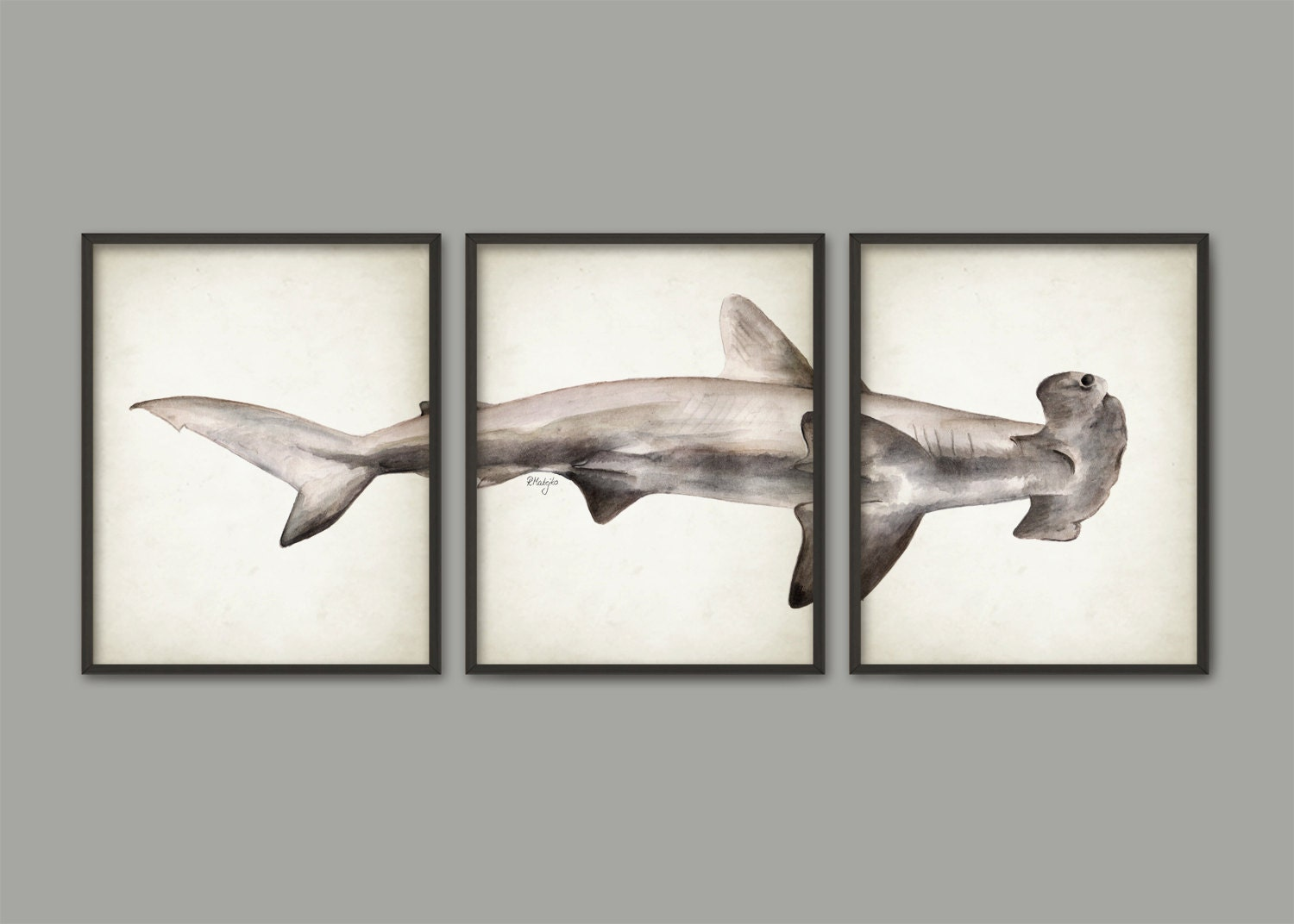 Hammerhead shark watercolor art poster set of 3 shark art for How do sharks use the bathroom