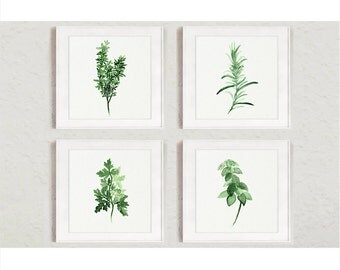 Herbs Set 4 Square Watercolor Herb Spice Painting, Thyme Art Print, Rosemary Kitchen Decor, Green Parsley Illustration, Basil Wall Sign