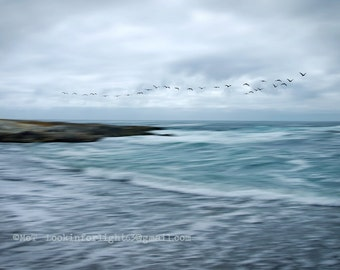 Birds in Flight photo, Birds flying over Abstract Blue Pacific Ocean Waves, Cloudy Sky Photo, Rough Waves, Montano de Oro California Nature