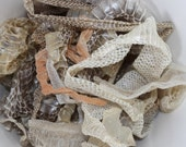 Snake Shed Mystery Grab Bag Stuffed Full of Venomous and/or Non-venomous Snake Skin
