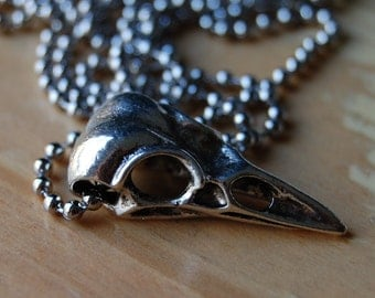 Tibetan Silver Bird Skull Pendant on Stainless Steel Ball Chain