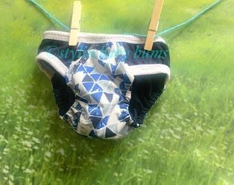 Boys waterproof PUL size small training pants- FREE SHIPPING!!