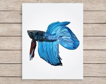Betta Fish Art Print, Beta Fish Art, Half Moon Betta, Siamese Fighting Fish, Fish Lover Gift, Aquarium Art, Fish Illustration, Pet Fish Art