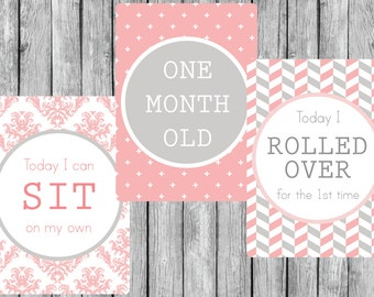 Instant Download 30 Digital Printable Baby Milestone Cards