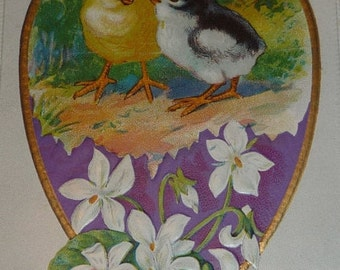 Cute Chicks and Violets Antiuque Nsh Easter Postcard