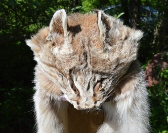 Lynx Fur Etsy