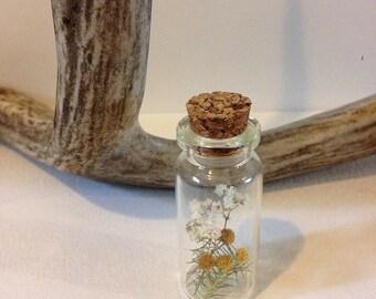 Botanical apothecary jar