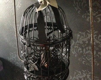 Taxidermy Fruit Bat Hanging in Cage