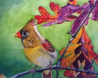 Autumn Cardinal Original Water Color Painting - print