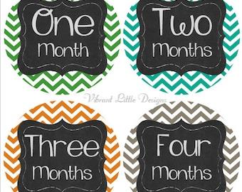 Baby Boy Monthly Stickers, Milestone Stickers, Month Stickers, Baby Month Stickers, Baby Stickers, Chevron #114