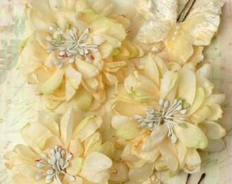 Petaloo Mums and Butterflies - Ivory