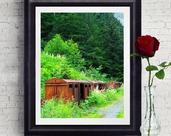 Alaska Train Photography